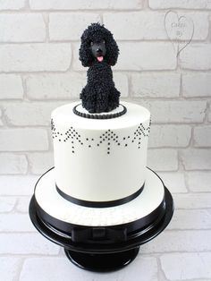 poodle cake  - Cake by CakesbyNinaCalverley