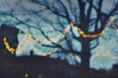 A personal favorite from my Etsy shop https://www.etsy.com/listing/226413685/boston-photography-night-bokeh-photo