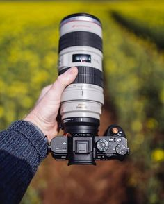 Lovely combo Sony A7RII Canon 70-200mm   Photo by @martinellardphoto