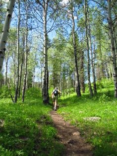 Hike to Cinnamon Lookout.  4.4 miles.  This trail is located just across the road from Cinnamon Lodge so when you are done stop in and have a great dinner!  #big sky Mt, #hiking montana
