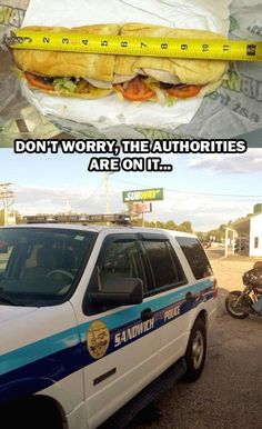 Less than a foot long but the authorities are on it