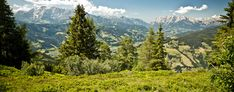 We have selected a great number of authentic hotels in the Austrian countryside. #ahc #hotelcollection #hotel #austria