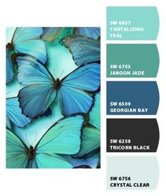 Instantly turn any picture into a palette with ColorSnap, created for you by Sherwin-Williams. Color Schemes Colour Palettes, Colour Pallette, Color Palate, Color Combinations, Nature Color Palette, Decoration Palette, Design Seeds, Colour Board, Color Swatches