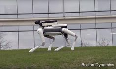 Alphabet unveils robot dog capable of cleaning the house