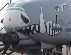 A-10 Thunderbolt 30MM death cannon.