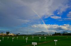 rainbow arching over a rice field