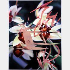 2014 - Art Basel - James Rosenquist: Incarnation Incantation
