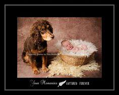 Newborn boy and man's best friend!