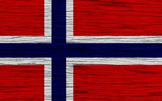 How government regulations hinder economic progress in Norway - The Libertarian Republic Norwegian People, Norwegian Flag, County Flags, Astronaut Wallpaper, Norway Flag, Game Wallpaper Iphone, National Symbols, Desktop Pictures, Oil And Gas