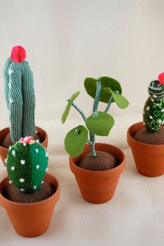 Potted plants by Sian Keegan