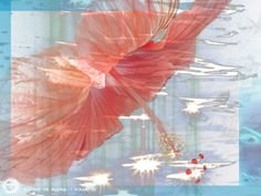 vs. Boozer round 15: shimmery hibiscus