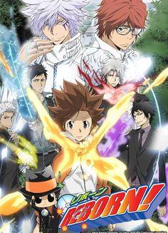 http://www.animes-mangas-ddl.com/2015/11/kateikyoushi-hitman-reborn-vostfr.html