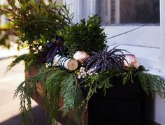 Last week our Novice Gardener, Meredith Swinehart, installed three DIY black window boxes on the front of her San Francisco home. Now she& set to decorate for Christmas with the help of our partner The Home Depot—and a very unusual mix of plants. Christmas Holidays, Christmas Wreaths, Christmas Decorations, Christmas Window Boxes, Seasonal Decor, Holiday Decor, Candle Shop, How To Make Wreaths, Advent Wreaths