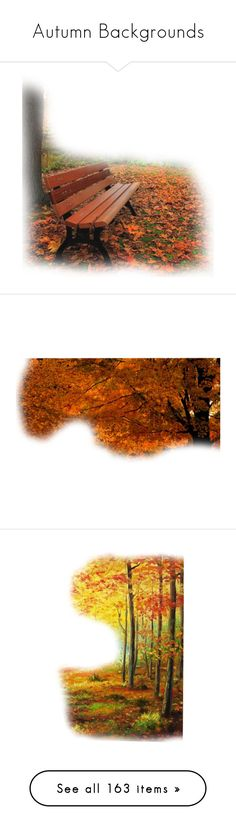 """""""Autumn Backgrounds"""" by sjk921 ❤ liked on Polyvore featuring backgrounds, fall, tube, autumn, garden, greenery, scenery, filler, trees and art"""
