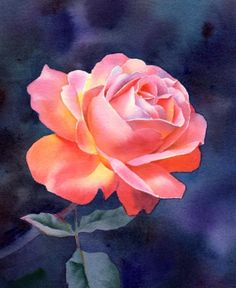 IDEAL GRACE watercolor floral rose painting, painting by artist Barbara Fox