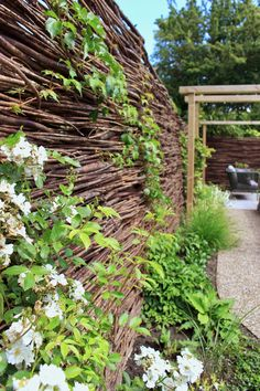 Diy Garden, Green Garden, Home And Garden, Source Of Inspiration, Garden Inspiration, Avocado Plant, Hydrangea Care, Hidden Garden, Adobe House