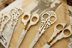 Beautiful scissors