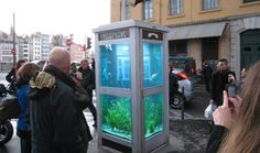 Phone Booth Aquarium, Lyon France