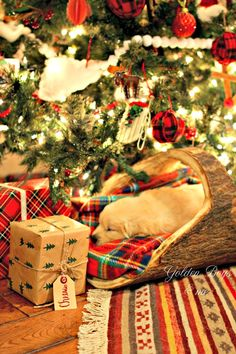Christmas 2015 ---  Golden Retriever puppy sleeping in log basket under Christmas tree - www.goldenboysandme.com