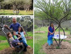Peter Cook and Becky Northey  Pooktre - shaped plum trees