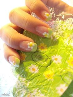 A fresh and jumpy French manicure best for the summer! Begin with a clear nail polish on your nails and tip it helpfully with a light green coating. To add a more cutesy effect, you can paint white petal flowers in between the French tip and the base color.