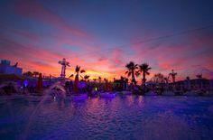 Ocean Beach Ibiza (OceanBeachIbiza) on Twitter