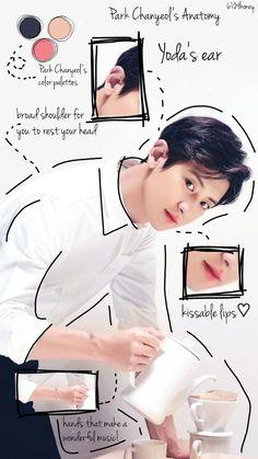 Chanyeol Cute, Park Chanyeol Exo, Kpop Exo, Exo Chanyeol, Huang Zi Tao, Exo Lockscreen, Exo Fan, Kissable Lips, Exo Memes