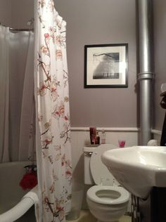 Wall color and shower curtain.   Apartment bathroom update!