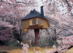 These Are The Most Amazing Tree Houses Ever - from io9.com