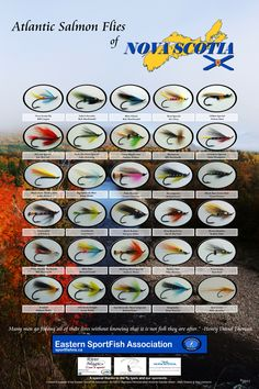 Atlantic Salmon Flies of Nova Scotia Poster, available for sale  19*28 inch $20.00  12*19 inch $15.00   All proceeds go directly to support the activities of the Eastern SportFish Association in Stillwater St. Mary's Nova Scotia