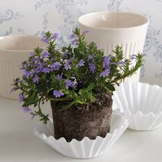 GOOD IDEA: Place a coffee filter at the bottom of a plant pot, over the drainage holes, to prevent the potting soil from spilling out when you water the plant. The soil will remain in the pot and the excess water will go through the filter.