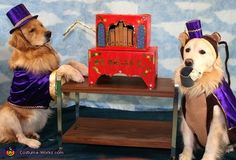 Organ grinder and his monkey - Halloween Costume Contest