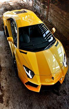 @Kathleen S S DeCosmo ♡❤ #Cars ❥  Lamborghini