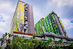Penyedia Jasa Mural Dinding Hotel di Jogja. Hubungi HP/WA : 0818 988 154. Terbaik & Berkualitas. May Bay, Palembang, Semarang, Lombok, Medan, Surabaya, Jakarta, Outdoor Pool, Hotel Offers