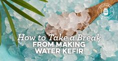 How to Take a Break From Making Water Kefir