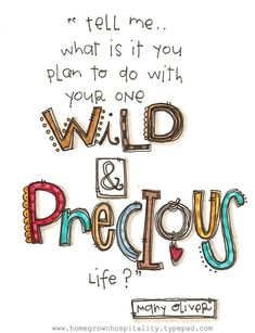 Tell me... what is it you plan to do with your one wild & precious life?