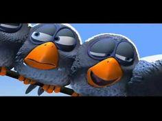 Die coolsten Vögel auf der Stromleitung