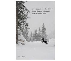 Deer HAIKU Art Snow Poetry Home Decor by GrayWolfGallery on Etsy