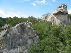 Отшлифованные природой скалы посреди хвойного леса
