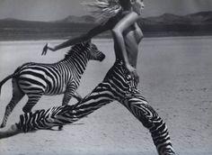 Ni oui, ni non Celine, Animal Photography, Fashion Photography, Beauty Photography, Robert Mapplethorpe, Animals Images, Wild Animals, Wild Hearts, Album