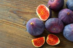 Fresh figs on wooden background stock photo