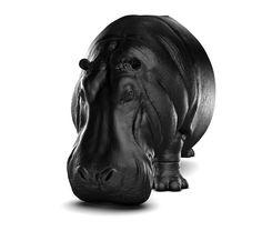 MAXIMO RIERA | HIPPO CHAIR