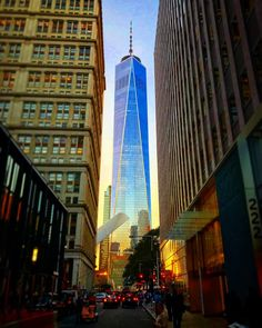 There can be only one. #onewtc #fultoncenter #lowermanhattan #worldtradecenter #fidi #financialdistrict #nycarchitecture #nyclife #nycmoments #nyc_highlights #nyc_explorers #nycwanderings #nycphotographer #newyork_instagram #newyork_ig #newyorkforall #mightynycpics #itsamazingoutthere #nycprimeshot #iphone7plus Fulton Center, New York City Christmas, Nyc Life, Nyc Photographers, Lower Manhattan, World Trade Center, Times Square, Highlights, Fair Grounds
