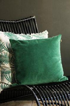 Forest Green Velvet Cushion - Cushions - Home Accessories - Wohnwagen Green Cushions, Velvet Cushions, Seat Cushions, Velvet Sofa, Tropical Bedroom Decor, Bedroom Green, Unique Home Accessories, Camera Accessories, Decorative Accessories