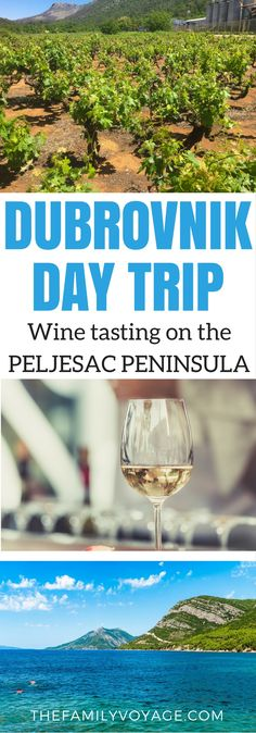 Looking for a daytrip from Dubrovnik? Visit the Peljesac Peninsula for Croatia wine tasting including dignac, plavac mali, and posip. Drink wine in Dalmatia, relax with locals on Prapratno Beach, then dine in Ston. #wine #winetravel #wineries #croatia #europe #foodie #foodietravel