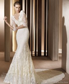 Elie Saab wedding dresses 2011 bridal collection - Auriga gown