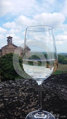 Glass of wine  Murisengo