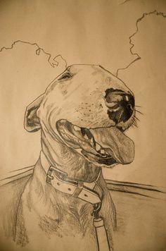 English Bull Terrier Más