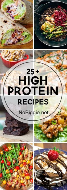 25+ High Protein Recipe | NoBiggie.net