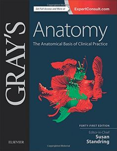 Grays Anatomy The Anatomical Basis Of Clinical Practice 41 Th Edition PDF EBook